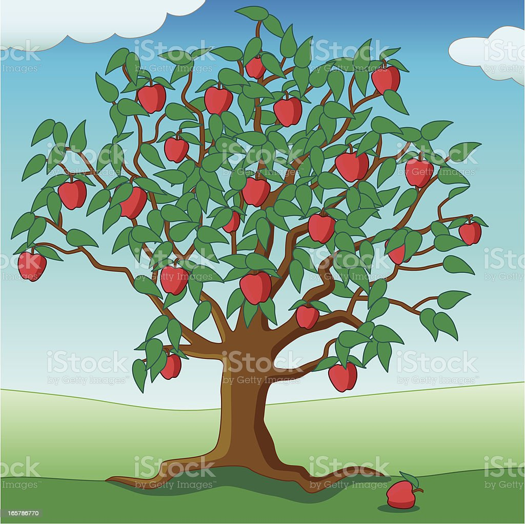 apple tree royalty-free stock vector art