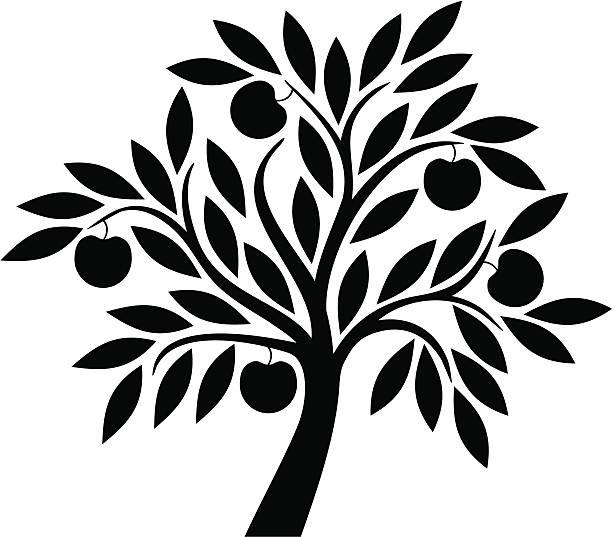 stockillustraties, clipart, cartoons en iconen met apple tree - fruitboom