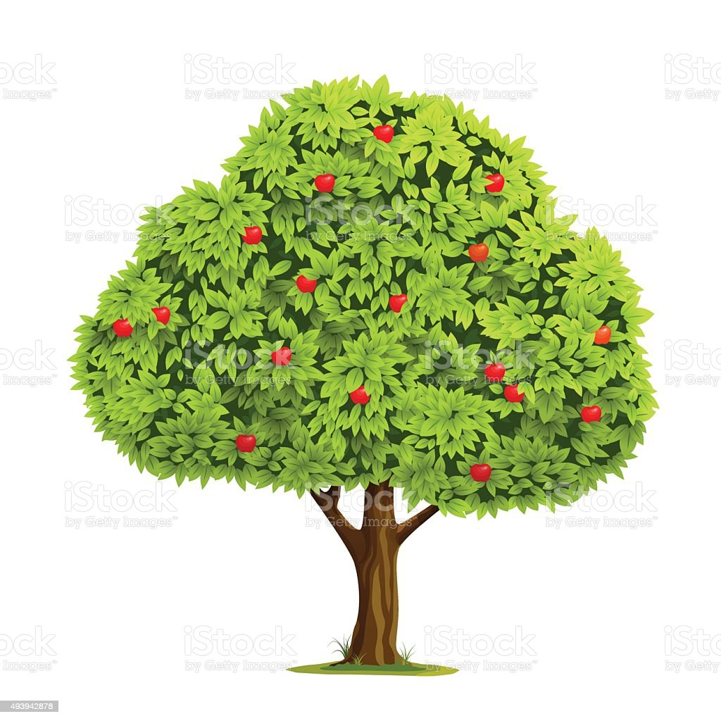 Apple tree with apple vector art illustration
