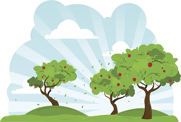 Apple Trees Blowing In The Wind vector art illustration