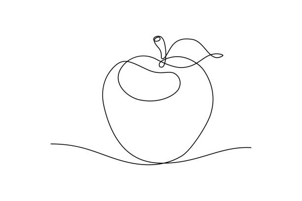 Apple Apple fruit in continious line art drawing style. Minimalist black line sketch on white background. Vector illustration fruit drawings stock illustrations