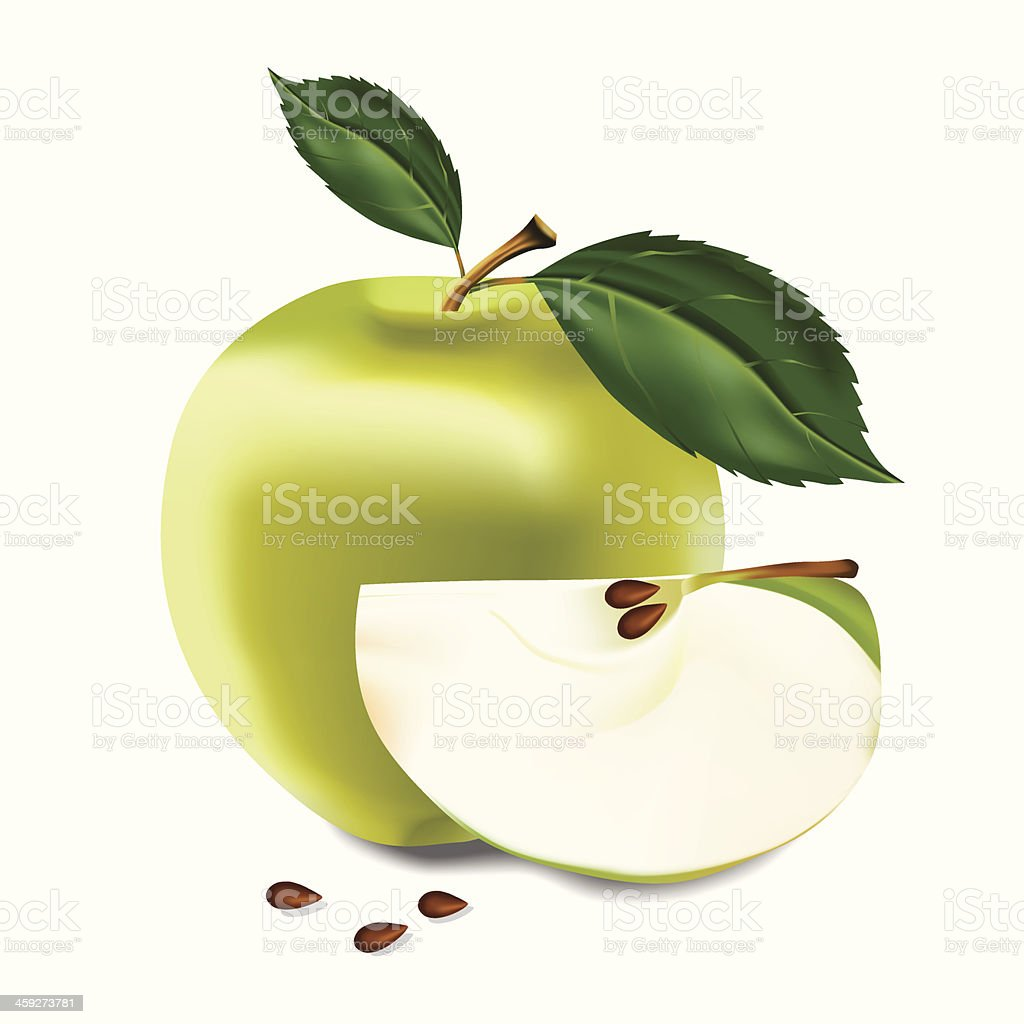 Apple. Vector illustration. royalty-free apple vector illustration stock vector art & more images of agriculture
