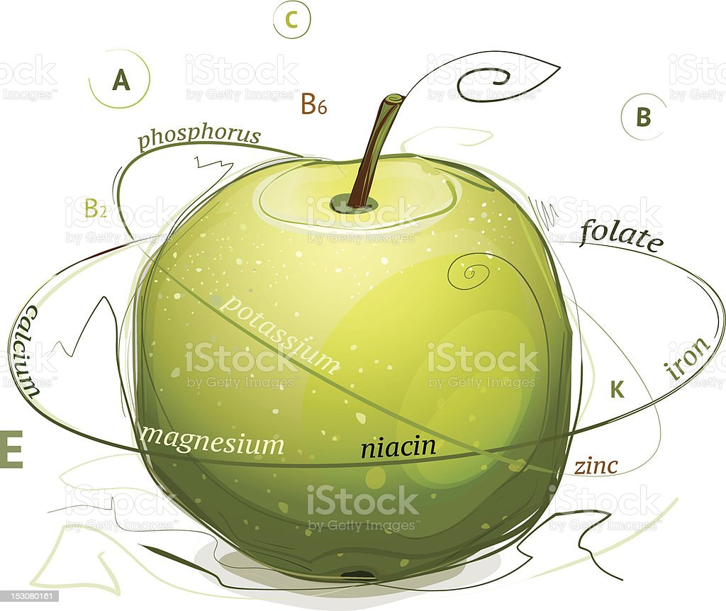 Apple vitamins and minerals illustration royalty-free stock vector art