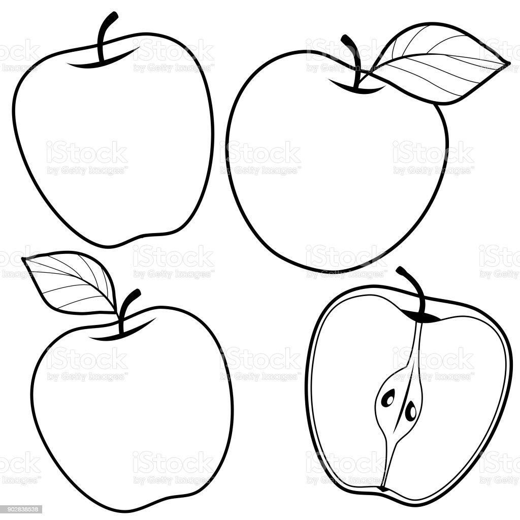 Elma Siyah Ve Beyaz Kitap Sayfa Boyama Stok Vektor Sanati Beyaz