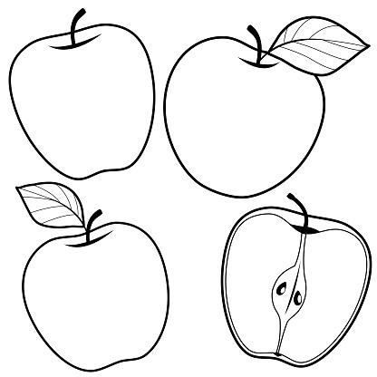 Ilustración De Manzanas Blanco Y Negro Para Colorear Página