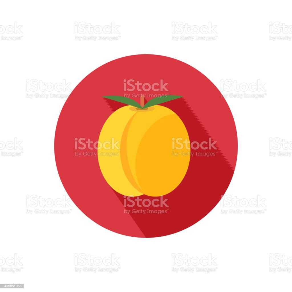 Apricot icon vector art illustration