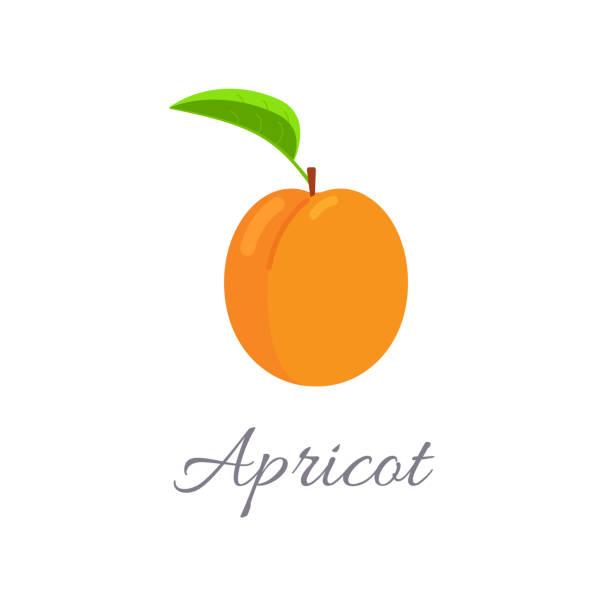 aprikose-symbol mit titel - aprikose stock-grafiken, -clipart, -cartoons und -symbole