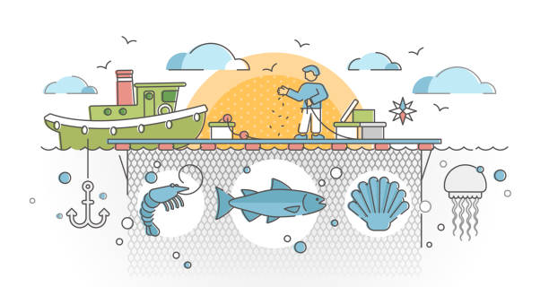 Aquaculture as seafood farming for production cultivation outline concept vector art illustration