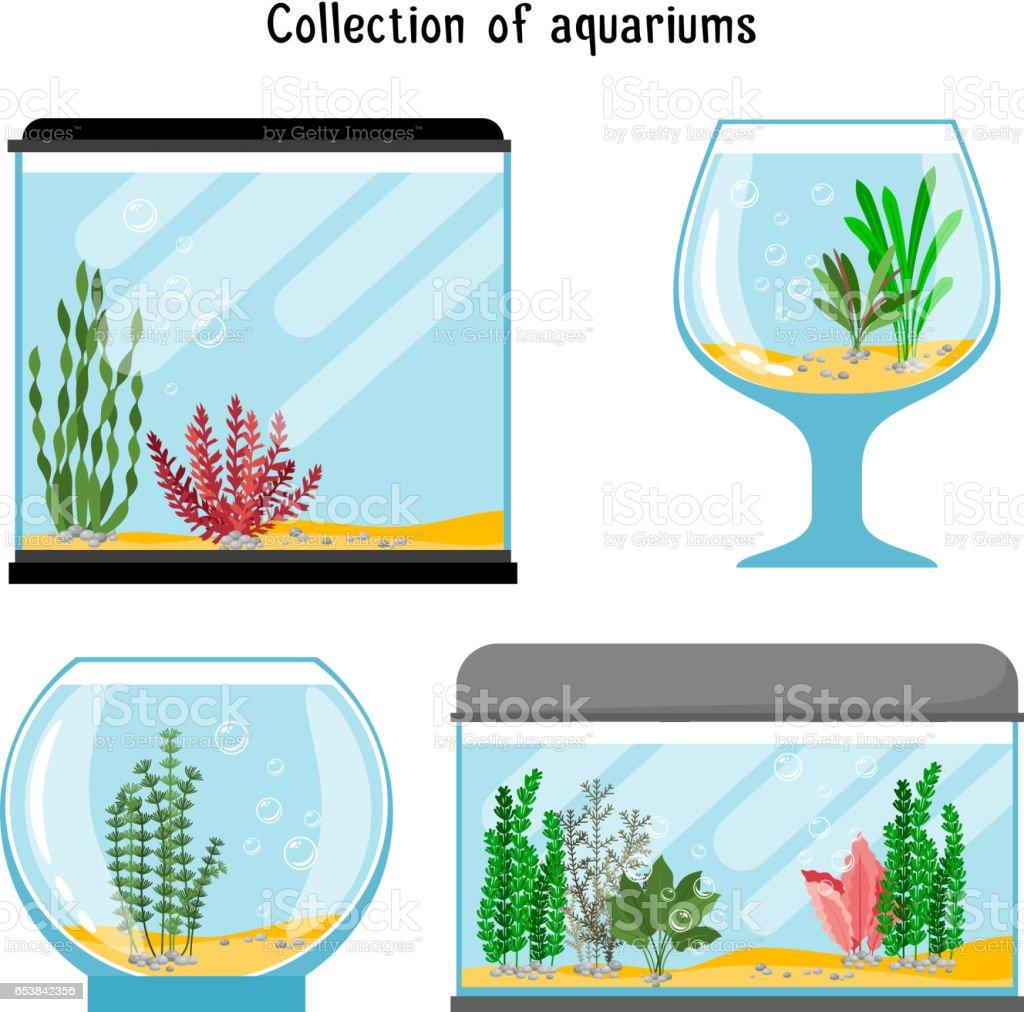royalty free fish tank clip art vector images illustrations istock rh istockphoto com aquarium clipart black and white empty aquarium clipart