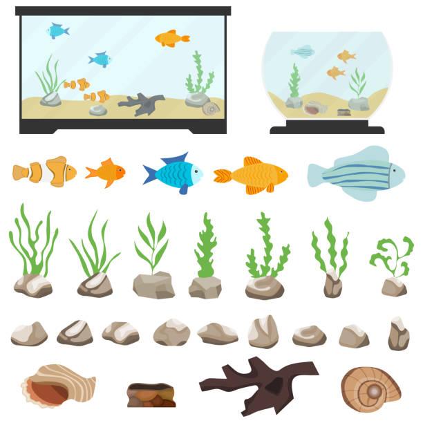 白い背景の上に分離水族館水中ベクトル要素。aquaristics の魚の石と異なる形状の海藻貝殻や水槽の水槽と漫画セット。 - 水族館点のイラスト素材/クリップアート素材/マンガ素材/アイコン素材