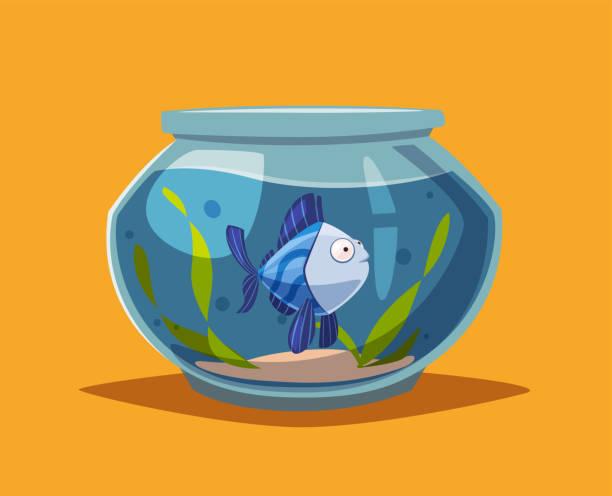 aquarium mit klarem wasser. cartoon-vektor-illustration - fischglas stock-grafiken, -clipart, -cartoons und -symbole