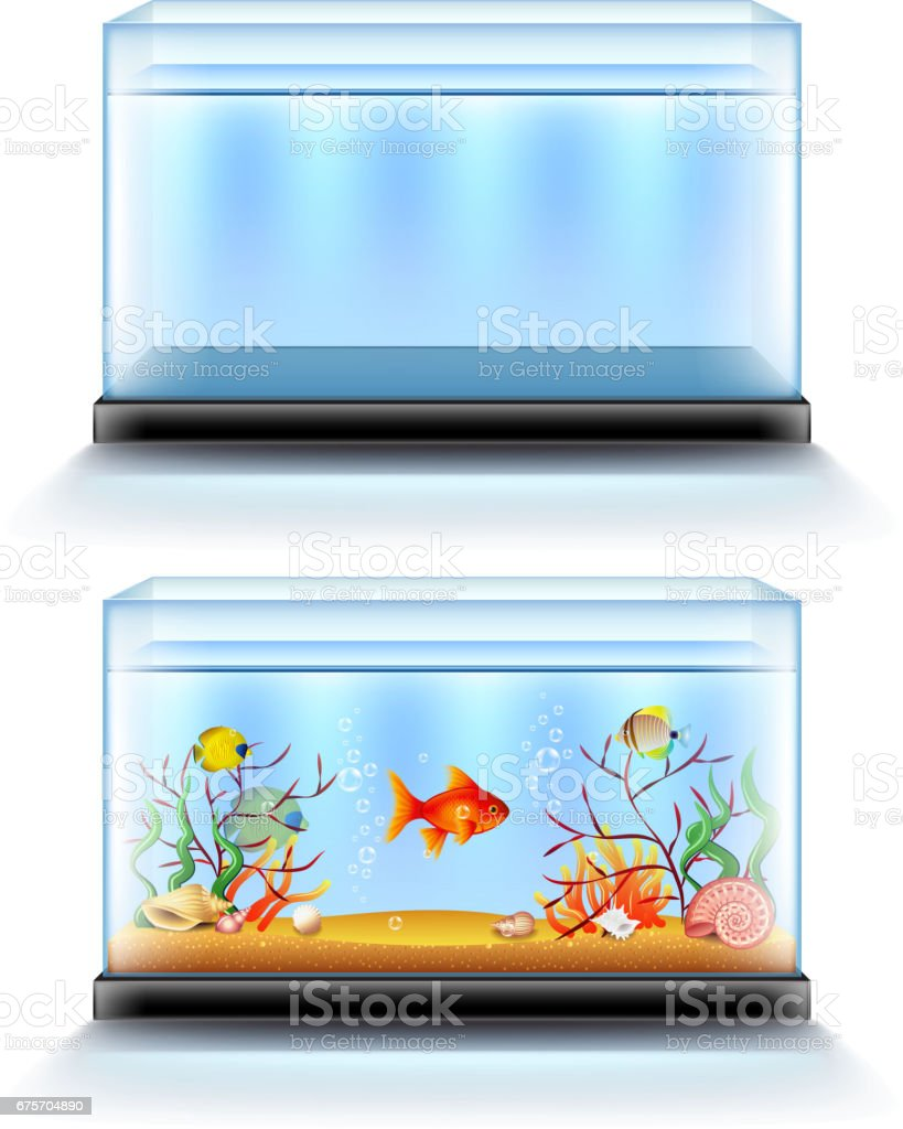 수족관 물고기와 빈 흰색 벡터에 고립 벡터 아트 일러스트