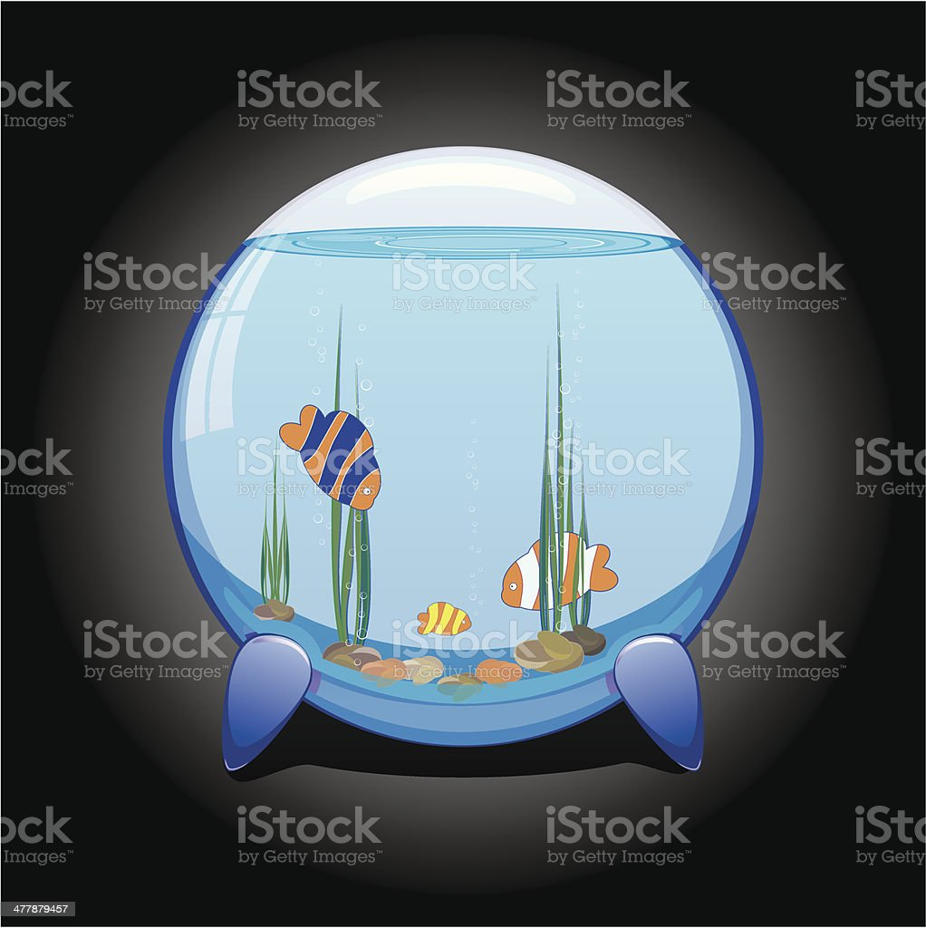 aquarium with tropical fishes on dark background royalty-free stock vector art