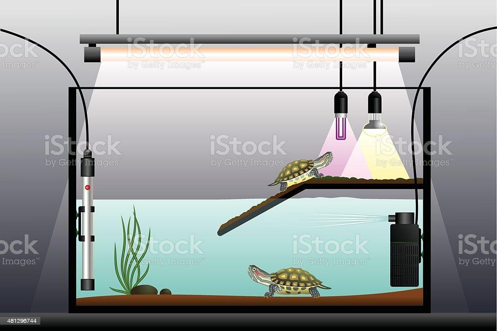 Aquaterrarium. - Royalty-free 2015 stock vector