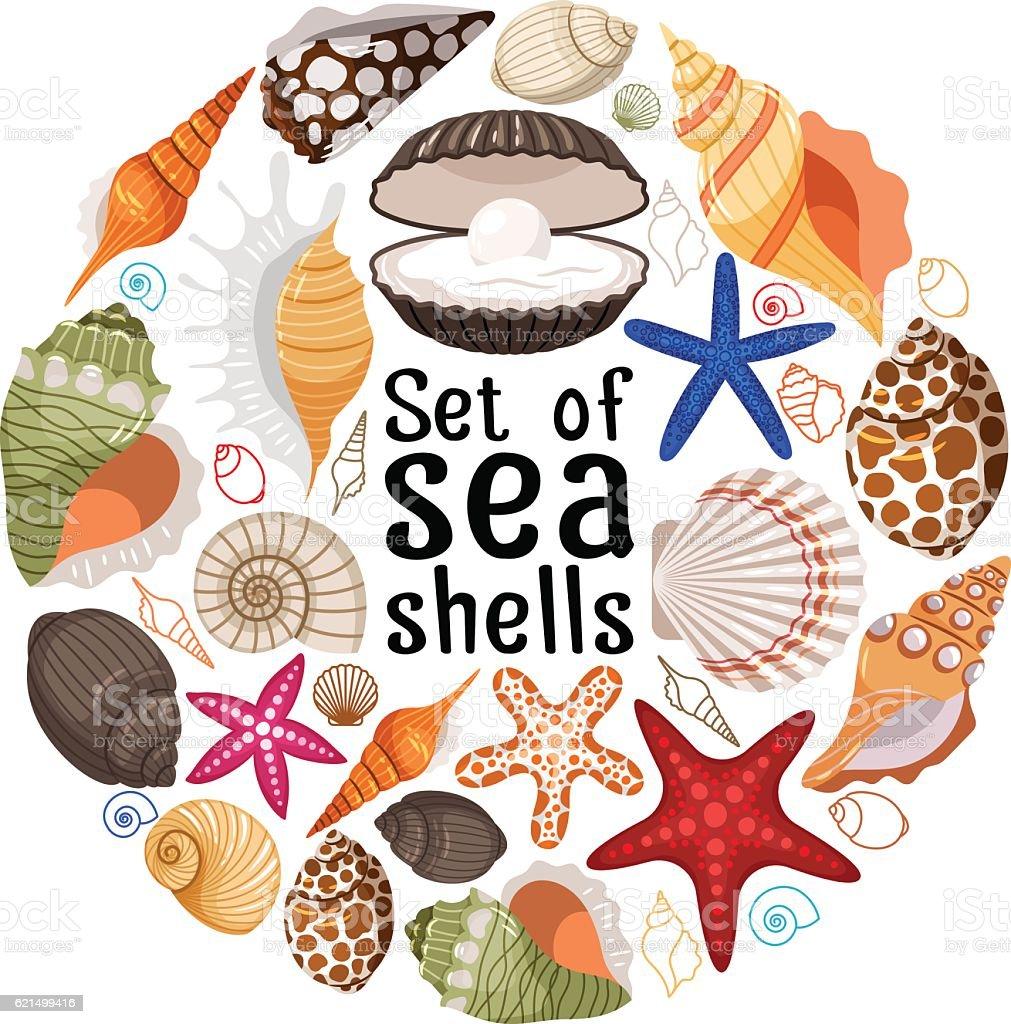Aquatic badge with sea pearl shells aquatic badge with sea pearl shells - immagini vettoriali stock e altre immagini di a forma di stella royalty-free