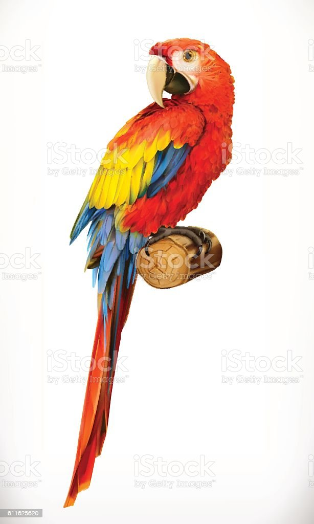 Ara parrot. Macaw. Photo realistic. 3d vector icon royalty-free ara parrot macaw photo realistic 3d vector icon stock illustration - download image now