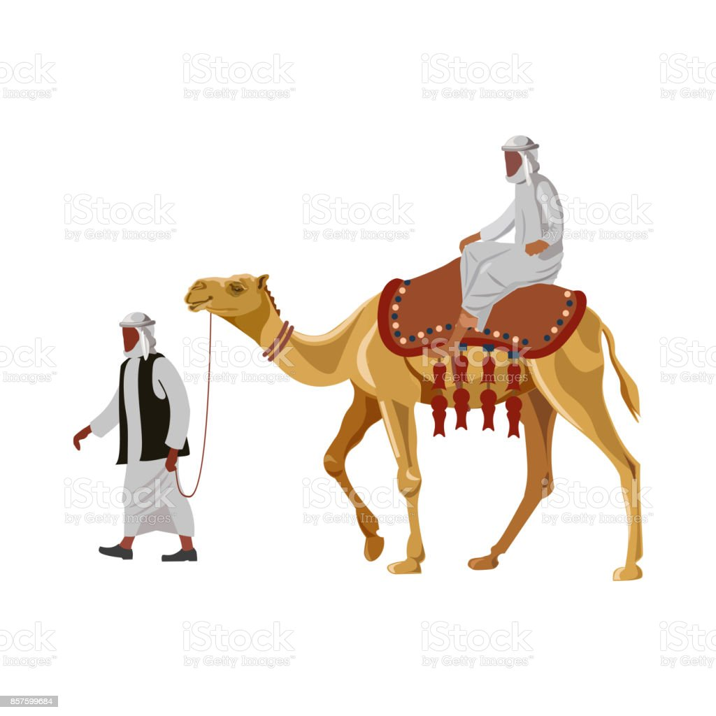 Arab man riding a camel vector art illustration