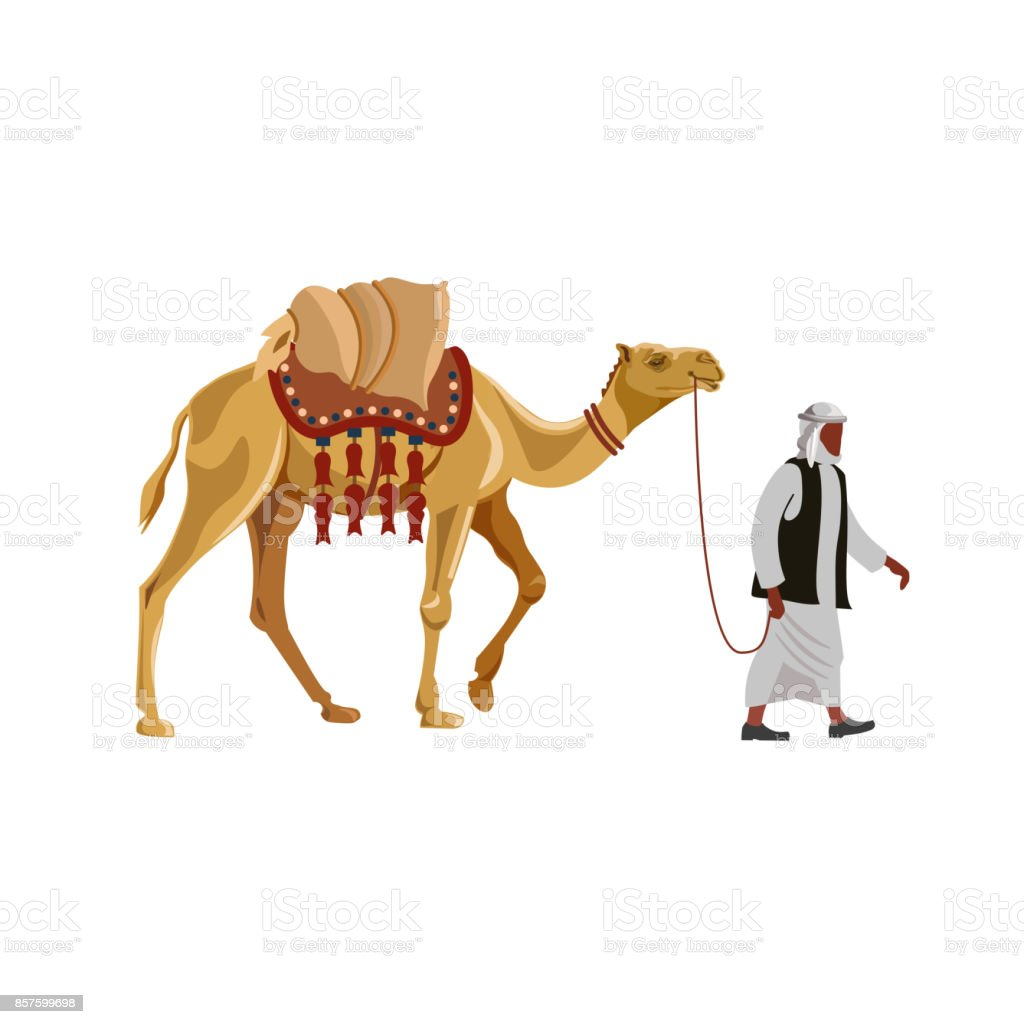 Arab man with a camel. vector art illustration