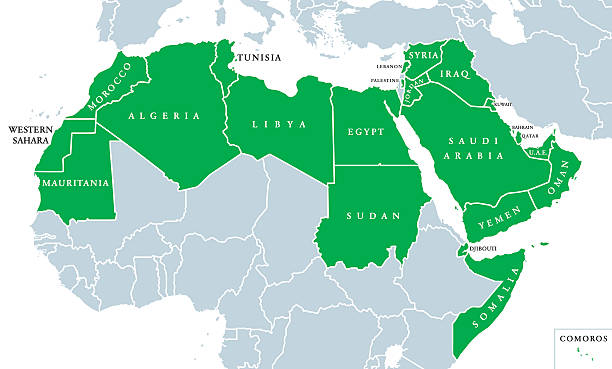 arab world political map - arab stock illustrations