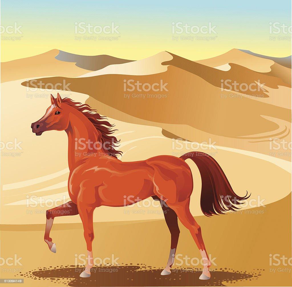 Arabian Stallion and Sand Dunes vector art illustration