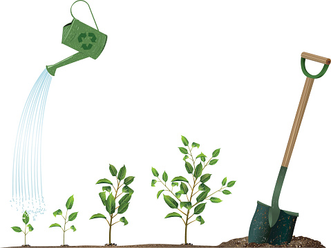 Arbor Day Concept Image with Watering Can and Sprouting Plants