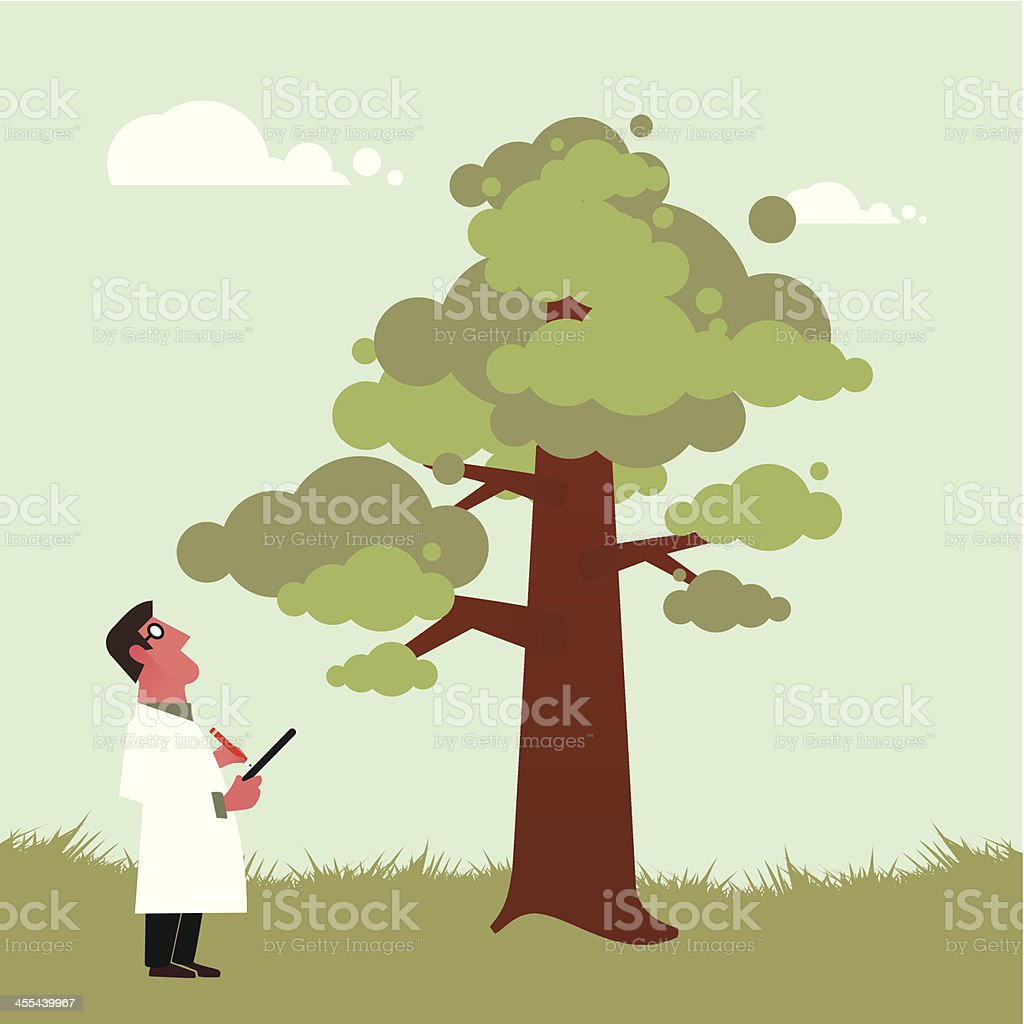 Arborist inspecting a tree vector art illustration