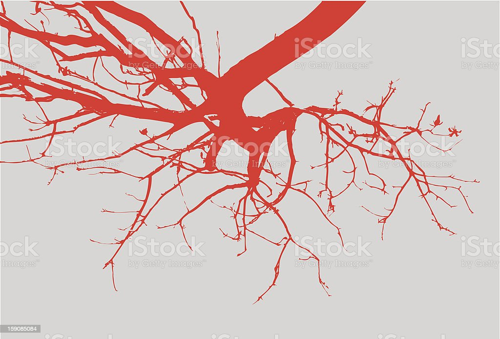 Arched Branches - Vector royalty-free stock vector art
