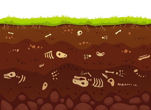 Huesos de la arqueología en capas del suelo. Enterrados de animales fósiles, hueso esqueleto de dinosaurio en la suciedad y la arcilla subterránea capa vector ilustración