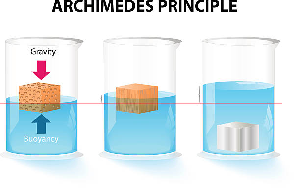 Archimedes principle Archimedes principle. The buoyant force acting on an object is equal to the weight of the displaced fluid floating on water stock illustrations