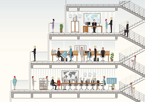 architectural office section