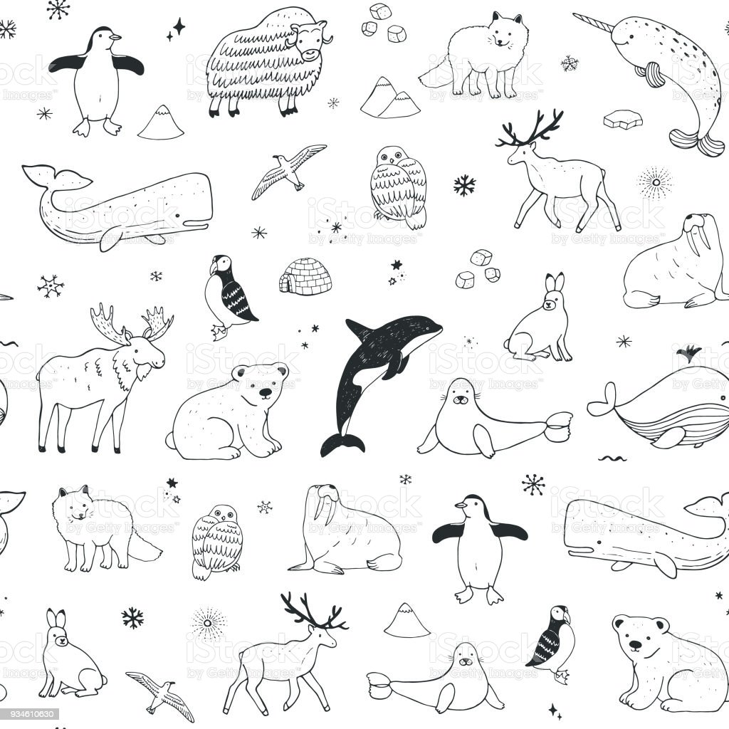 Arctic and antarctic polar doodle cartoon animals seamless pattern royalty-free arctic and antarctic polar doodle cartoon animals seamless pattern stock illustration - download image now