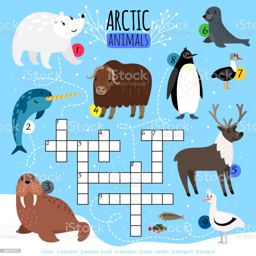 Arctic animals crossword puzzle royalty-free arctic animals crossword puzzle stock vector art & more images of animal