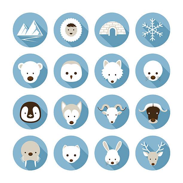Arctic Animals Flat Icons Set Winter, Nature Travel and Wildlife arctic stock illustrations