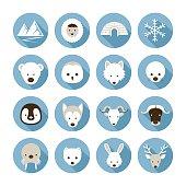 Arctic Animals Flat Icons Set