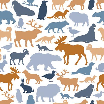 Arctic Animals Pattern