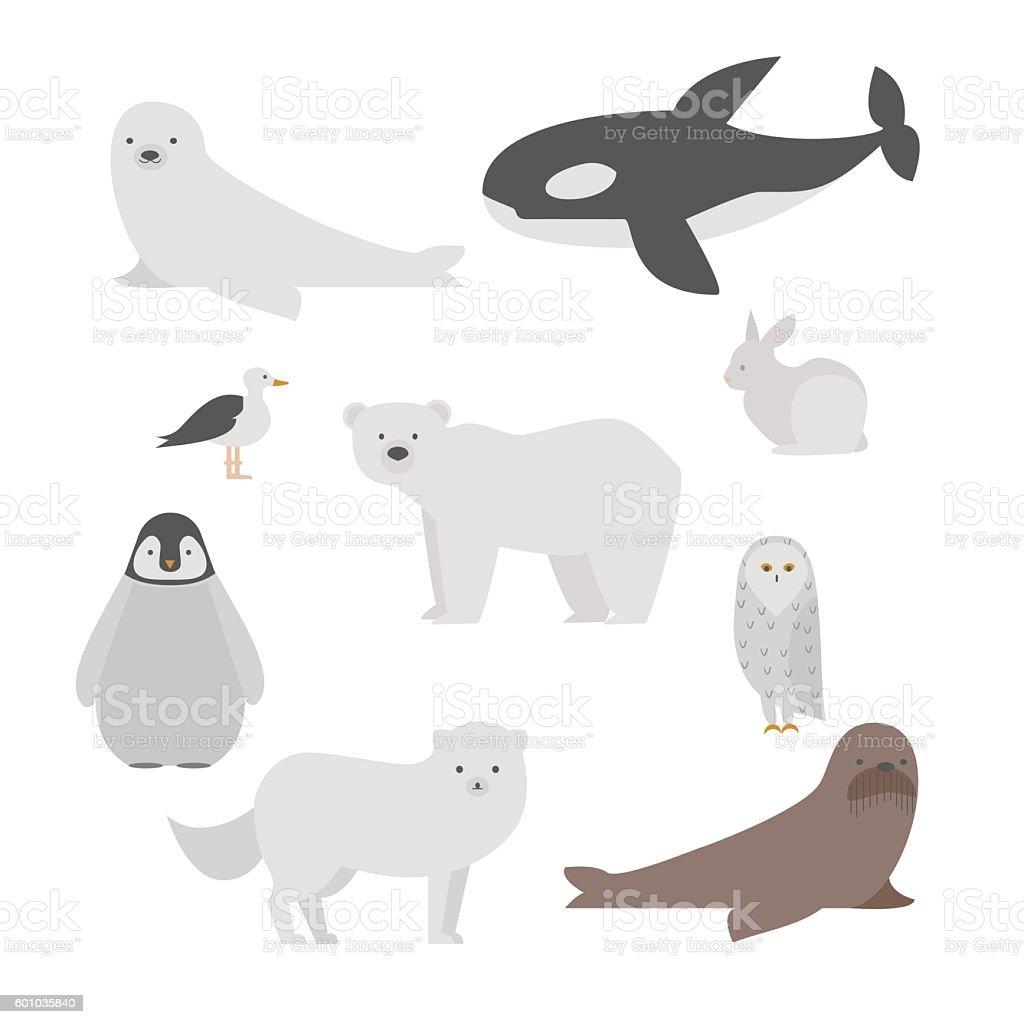 Arctic animals set vector art illustration
