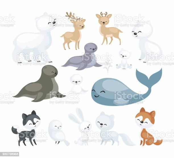 Arctic animals set vector id930768968?b=1&k=6&m=930768968&s=612x612&h=677qrf1yi8z5mf6oftzhduaxdv0 8bi7cf0pcexfwug=