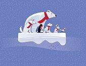 arctic animals standing on ice floe
