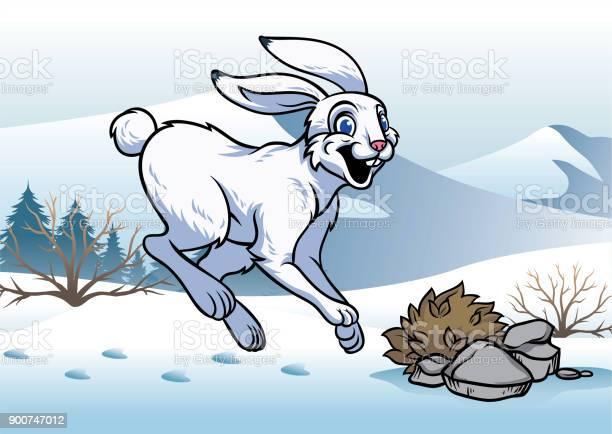 Arctic hare in winter vector id900747012?b=1&k=6&m=900747012&s=612x612&h=rh8ohoy1sdksykcoacmbequdvqtfsrsgyeuedyxququ=
