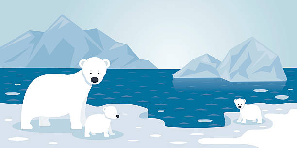 arctic polar bear iceberg scene, mother and baby - antarctica travel stock illustrations