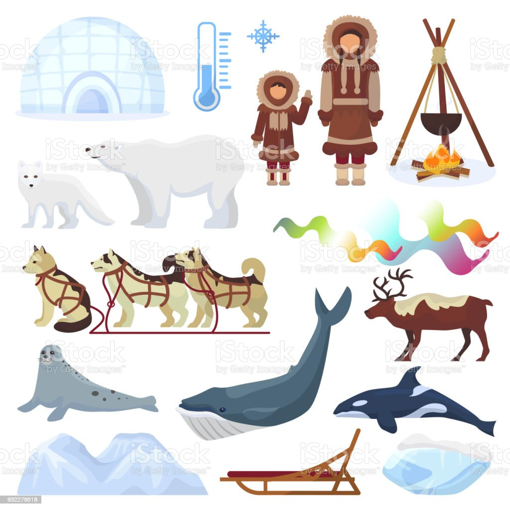 Ártico vector borealis norte Noruega e trenós de cães husky sledge para yurta no conjunto de polaris ilustração inverno nevado de animais de personagens étnicos do Norte e urso polar isolado no fundo branco - ilustração de arte em vetor