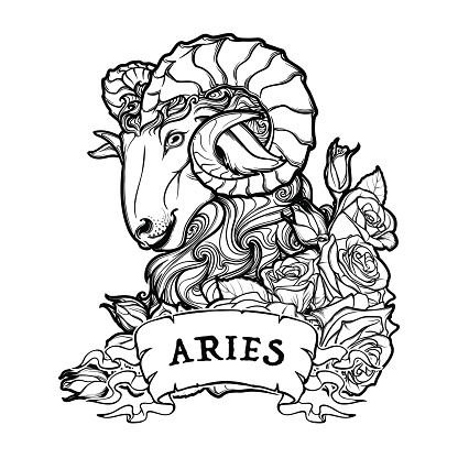 Aries isolated on white background.