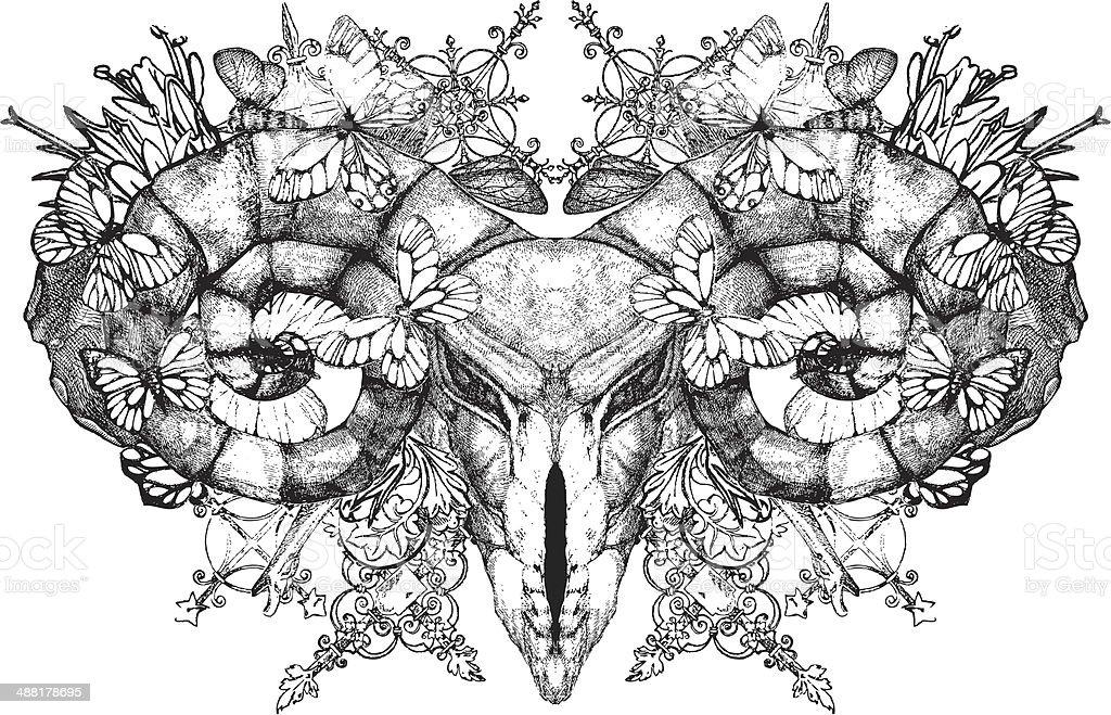 Aries.skull with horns. Gothic skull. - Illustration royalty-free stock vector art