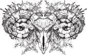 Aries.skull with horns. Gothic skull. - Illustration