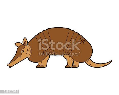 istock Armadillo isolated. Animal armor-clad vector illustration 1316420873