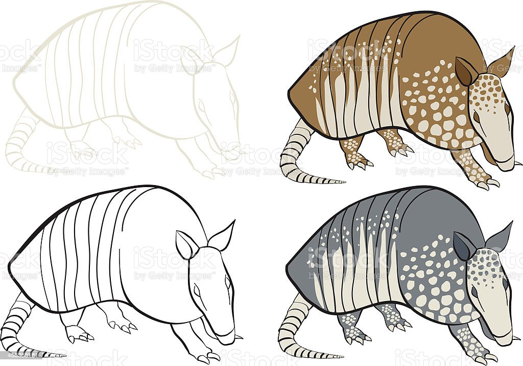 armadillo research paper A nine-banded armadillo said the paper chief of the laboratory research branch for the national hansen's disease program in baton rouge.