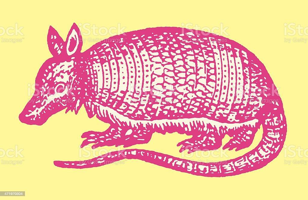 Armadillo vector art illustration