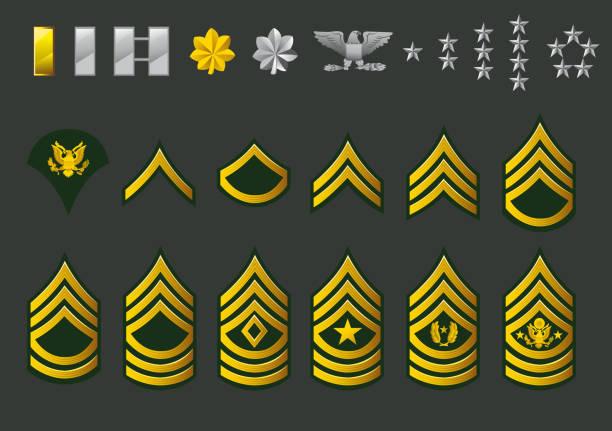 ilustraciones, imágenes clip art, dibujos animados e iconos de stock de us army enlisted filas - oficial rango militar