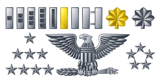 Army Military Officer Insignia Ranks Military American army officer ranks insignia badges icons major military rank stock illustrations