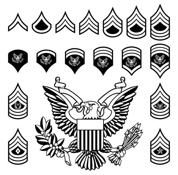 Army Military Rank Insignia Set of military American enlisted army ranks insignia badges icons major military rank stock illustrations
